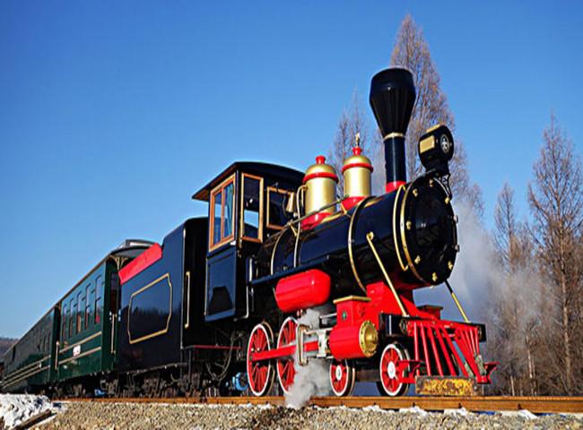 Ecoland歐洲森林樂園~英式小火車